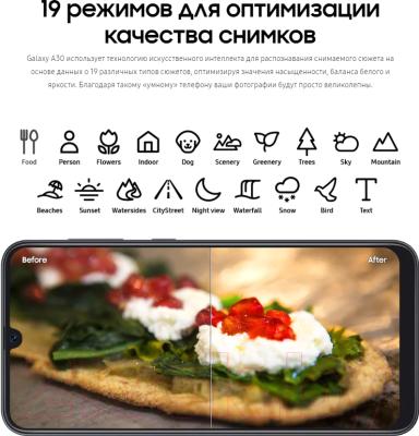 Смартфон Samsung Galaxy A30 64GB 2019 / SM-A305FZBOSER (синий)