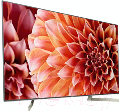 Телевизор Sony KD-49XF9005BR2 + видеосервис Persik на 12 месяцев