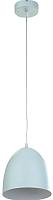 Потолочный светильник TK Lighting TKP1941 -