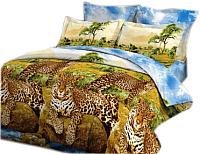 Комплект постельного белья VitTex 4126-25 -