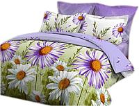Комплект постельного белья VitTex 4168-25 -