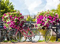 Картина Orlix Велосипеды / CA-01314 -