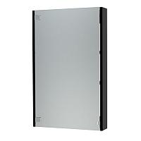 Шкаф с зеркалом для ванной Triton Эко-50 (черный) -