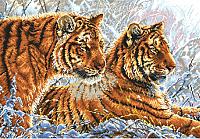 Набор для вышивания БЕЛОСНЕЖКА Амурские тигры / 2333-14 -