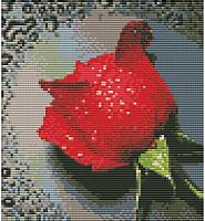 Набор для вышивания БЕЛОСНЕЖКА Красный бутон / 7505-РК -