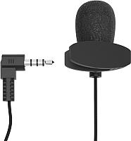 Микрофон Ritmix RCM-102 -