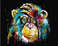 Картина по номерам Picasso Радужный шимпанзе (PC4050501) -
