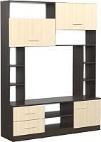 Стенка SV-мебель Гостиная Гамма 16 (дуб венге/дуб млечный) -