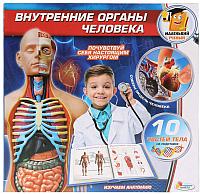 Набор для опытов Играем вместе Внутренние органы человека / KY-1000 -