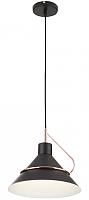 Потолочный светильник Freya Amis FR5025PL-01B -