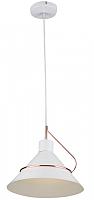 Потолочный светильник Freya Amis FR5025PL-01W -