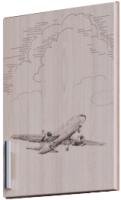 Дверца мебельная SV-мебель Город (ясень шимо светлый/самолет) -