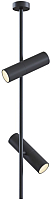 Потолочный светильник Maytoni Elti C021CL-02B -