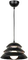 Потолочный светильник Lussole Beijing LSP-8131 -