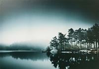 Картина Ikea Пьеттерид 004.382.37 -