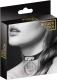 Ошейник Bijoux Pour Toi 80801 (черный) -