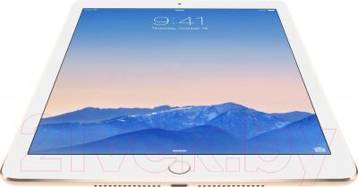 Планшет Apple iPad Air 2 128GB 4G / MH1G2TU/A (золото) - вид снизу