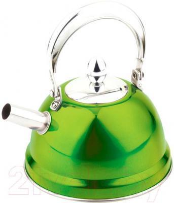 Чайник Peterhof PH-15517 - общий вид