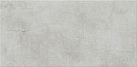 Плитка Opoczno Dreaming Light Grey OP444-003-1 (297x598) -
