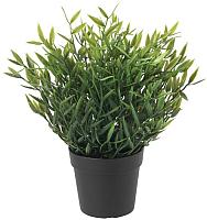 Искусственное растение Ikea Фейка 204.339.41 -