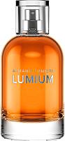 Парфюмерная вода Lumium 495 (100мл) -