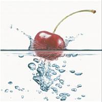 Панно Opoczno Water Sparkles Inserto Cherry OD496-001 (594x600) -