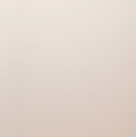 Рулонная штора Lm Decor Лайт LM 30-02C (48x160) -