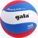 Мяч волейбольный Gala Sport Pro-Line 10 FIVB / BV5591S (размер 5, белый/голубой/красный) -