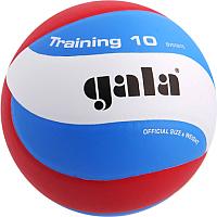 Мяч волейбольный Gala Sport Training 10 / BV5561S (размер 5, белый/голубой/красный) -