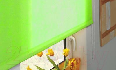 Рулонная штора Gardinia Лайт 307 (120x170) - в интерьере