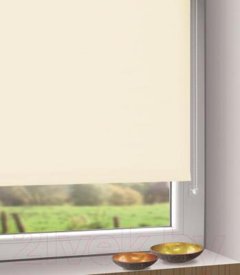 Рулонная штора Gardinia Мини 300 (61.5x150) - в интерьере