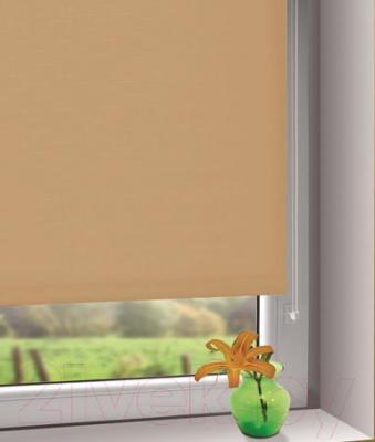Рулонная штора Gardinia Мини 502 (50x150) - в интерьере