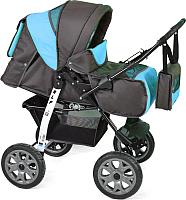 Детская универсальная коляска Smile Line Alf I (al07, серый/голубой) -