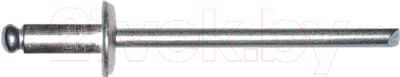 Заклепка Starfix SMC3-42338-500