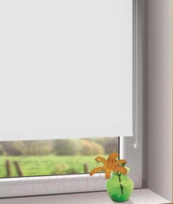 Рулонная штора Gardinia Мини 508 (80x150) - в интерьере