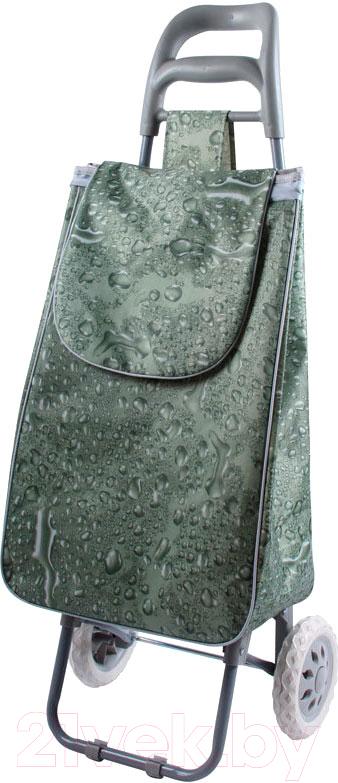 Купить Сумка-тележка Рыжий кот, А204 (aqua), Китай, пластик
