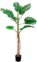 Искусственное растение Orlix Монстера / 06-100-D -