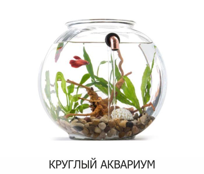 Круглый